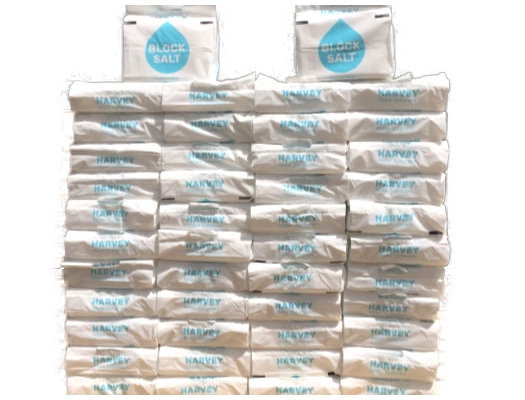50 Packs of Harvey's Block Salt